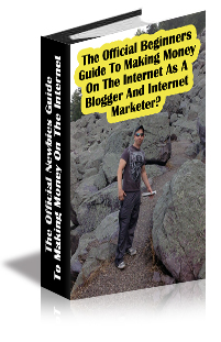 The Official Newbies Guide To Making Money On The Internet As A Blogger And Internet Marketer? cover