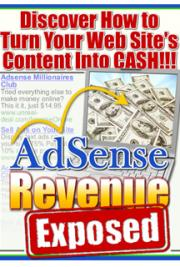 AdSense Revenue Exposed