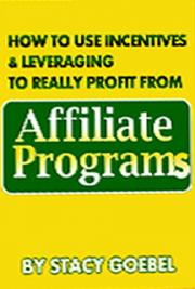 How to Use Incentives & Leverage to Really Profit From Affiliate Programs cover