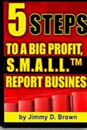 5 Steps to a Big-Profit S.M.A.L.L. Report Business cover