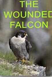 The Wounded Falcon