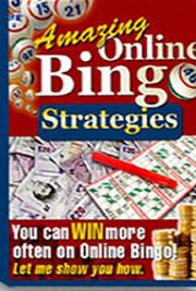 Online Bingo Strategies cover