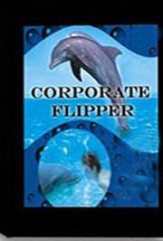 Corporate Flipper