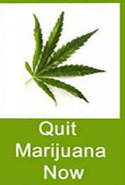 Quit Marijuana Now cover