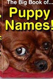 The Big Book of Puppy Names cover