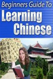 An Introduction to Learning the Chinese Language
