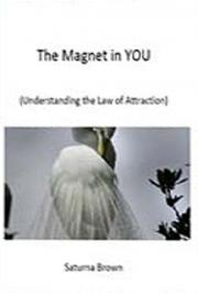 The Magnet in You! cover
