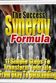 The Success Synergy Formula cover