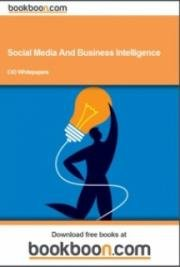 Social Media and Business Intelligence