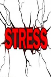 Stress Management - How to Break Free from a Stressful Lifestyle