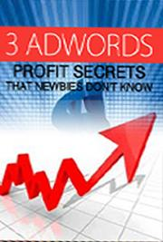 3 Adwords Profit Secrets that Newbies Don't Know