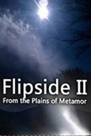 Flipside II: From the Plains of Metamor