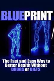 Blueprint: The Fast and Easy Way to Better Health Without Drugs or Diets