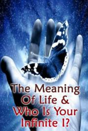 The Meaning of Life & Who is Your Infinite I?