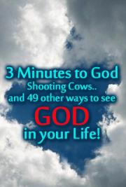 3 Minutes to God - Shooting Cows and 49 Other Ways to See God in Your Life!