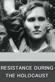 Resistance during the Holocaust cover