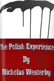 The Polish Experience