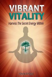 Vibrant Vitality - Harness The Secret Energy Within