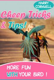 Cheep Tricks & Tips!