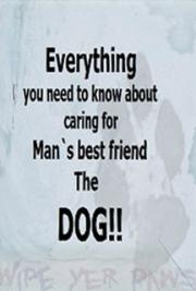 Everything you Need to Know About Caring for Man`s Best Friend - The Dog!!