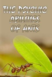 The Psychic Abilities of Ants