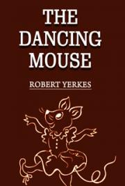 The Dancing Mouse cover