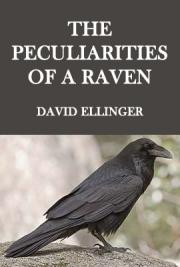 The Peculiarities of a Raven