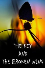 The Key and the Broken Wing