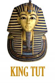 King Tut By Egyking Free Book Download
