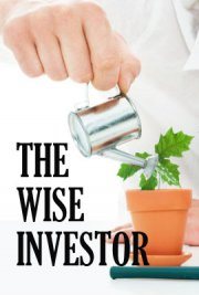 The Wise Investor