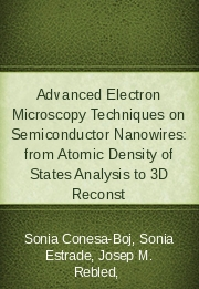 Advanced Electron Microscopy Techniques on Semiconductor Nanowires: from Atomic Density of States Analysis to 3D Reconst