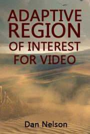 Adaptive Region of Interest for Video