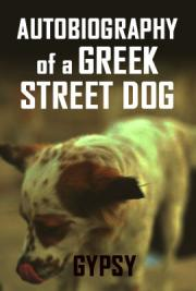 Autobiography of a Greek Street Dog