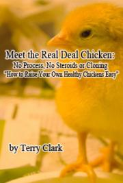 Meet the Real Deal Chicken: No Process, No Steroids or Cloning