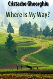 Where is my Way?
