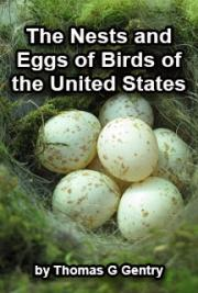 The Nests and Eggs of Birds of the United States