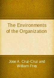 The Environments of the Organization