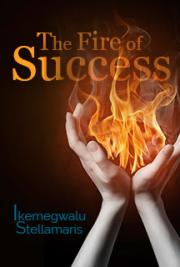 The Fire of Success