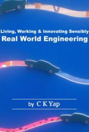 Living, Working & Innovating Sensibly: Real World Engineering