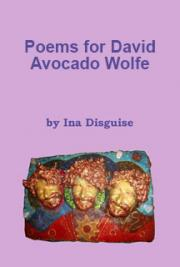 Poems for David Avocado Wolfe