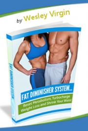Fat Diminisher System Book PDF with Review