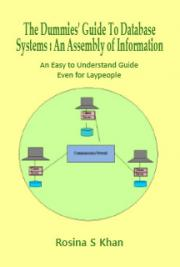 The Dummies' Guide to Database Systems: An Assembly of Information