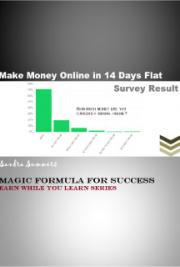 Make Money Online In 14 Days Flat - Magic Formula For Success