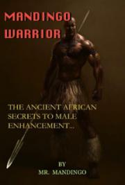 Mandingo Warrior Course