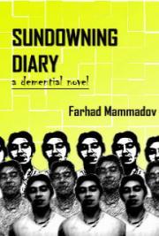 Sundowning Diary - Part 3