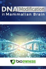 DNA Modification in Mammalian Brain