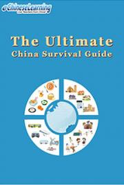 The Ultimate China Survival Guide