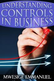 Understanding Business Controls