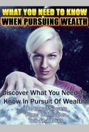 Pursuing Wealth