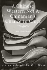 A Chinese Western Not A Chinaman's Chance In Chico: a true tale of the Old West